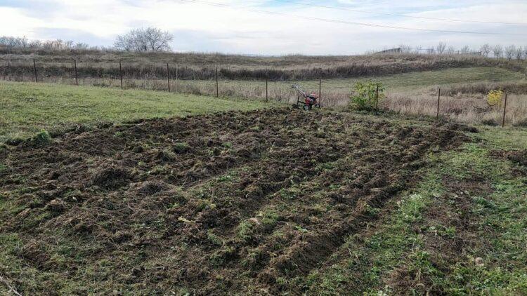 plough garden