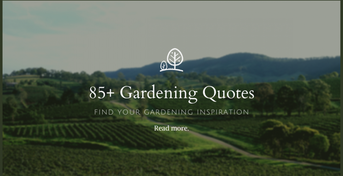 85+ Best Gardening Quotes for Gardeners