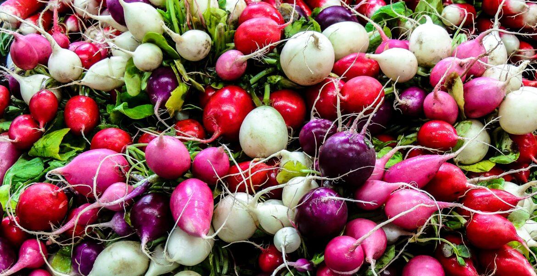 too many radishes