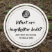 What are hugelkultur beds and why we built one